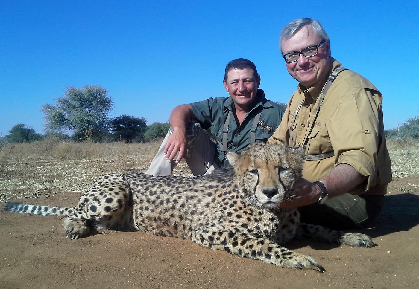 hunting-cheetah-004
