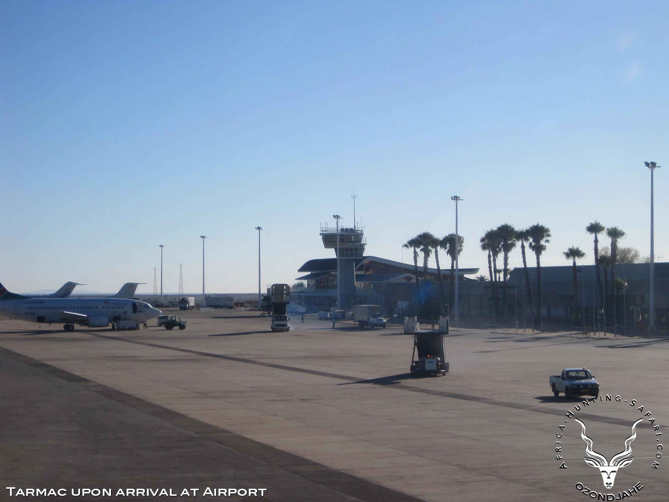 Hunting-africa-aeroport-tarmac
