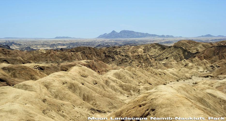 african-hunting-safaris-desert