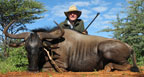 hunting-africa-blue-wildebeest