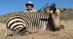 hunting-africa-hartmann-zebra