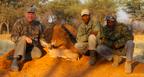 hunting-africa-steenbok