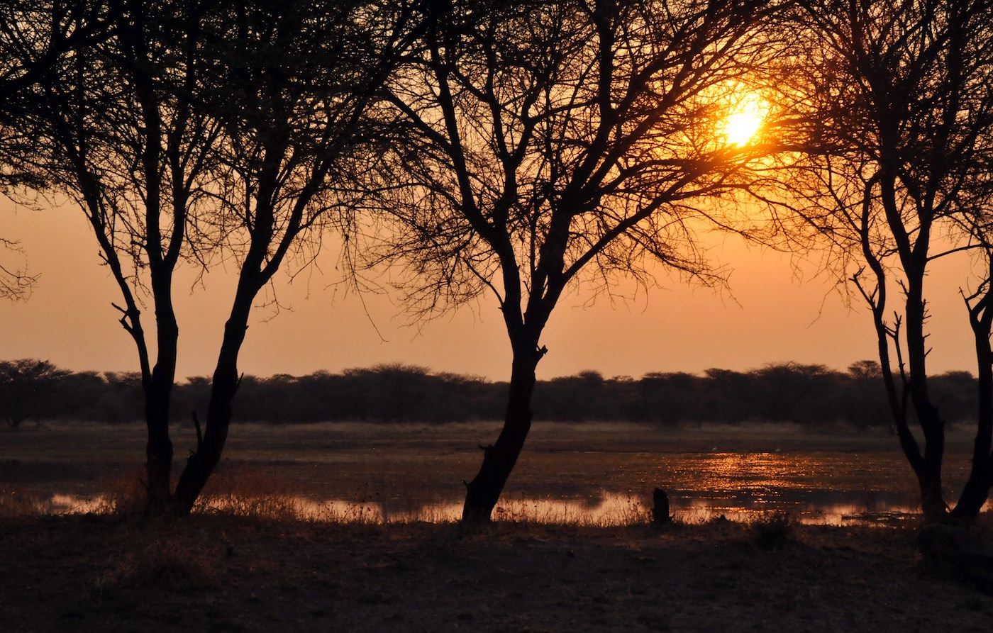 hunting-africa-sunset
