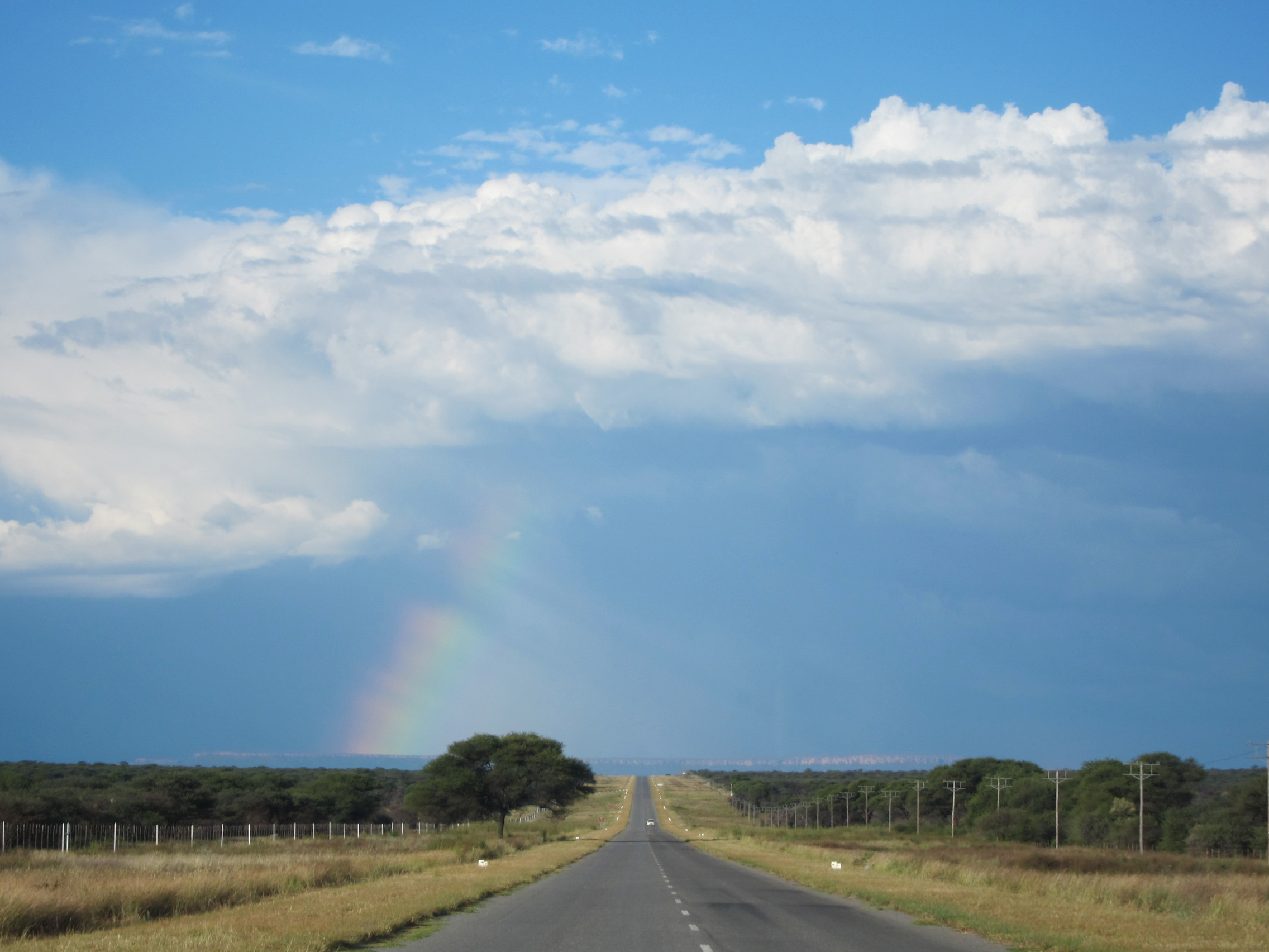 hunting-namibia-road